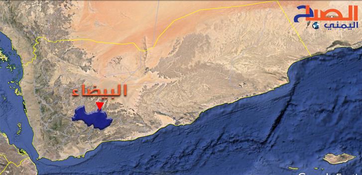 Photo of قوات صنعاء تهاجم مواقع داعش في البيضاء