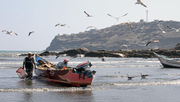 "Photo of الحديدة..العثور على""10″ جثث لصيادين بعد استهداف التحالف لقواربهم"