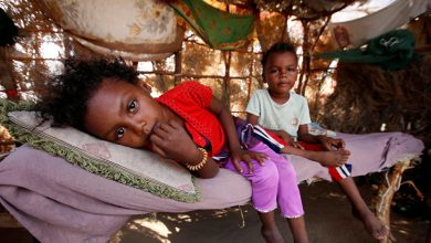 Photo of الأمم المتحدة: 10 ملايين يمني يعانون من الجوع الشديد