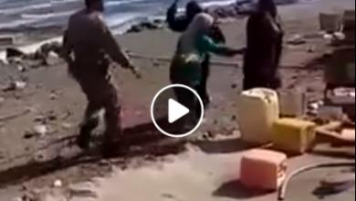 Photo of فضيحة جديدة مدوية.. مليشيات الإمارات تنتهك أعراض نساء عدن (فيديو)