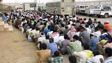 Photo of معظمهم يمنيين.. سوق العمل السعودي يطرد مليون و600 ألف مغترب
