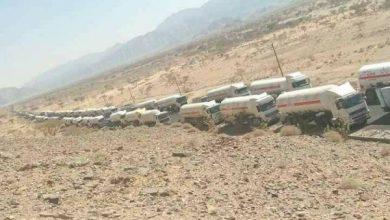 Photo of سلطات الشرعية توقف ناقلات الغاز عند منفذ التربة وتمنعها من الدخول