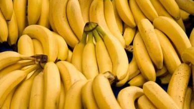 Photo of تحذيرات صحية من تناول الموز على معدة خاوية