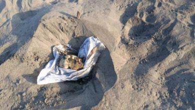Photo of العثور على جثة مدفونة بالقرب من لواء ثامن صاعقة في عدن