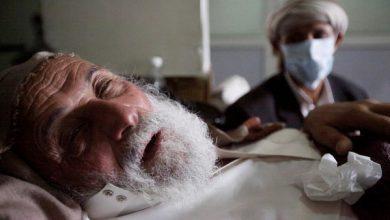 """Photo of تعرف على أرقام الطوارئ للإبلاغ عن """"إنفلونزا الخنازير"""""""