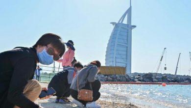 Photo of الامارات.. تسجيل أكبر حصيلة يومية للإصابات كورونا منذ تفشي الفيروس