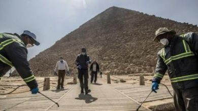 Photo of مصر تسجيل 9 وفيات و298 حالة إصابة جديدة بفيروس كورونا